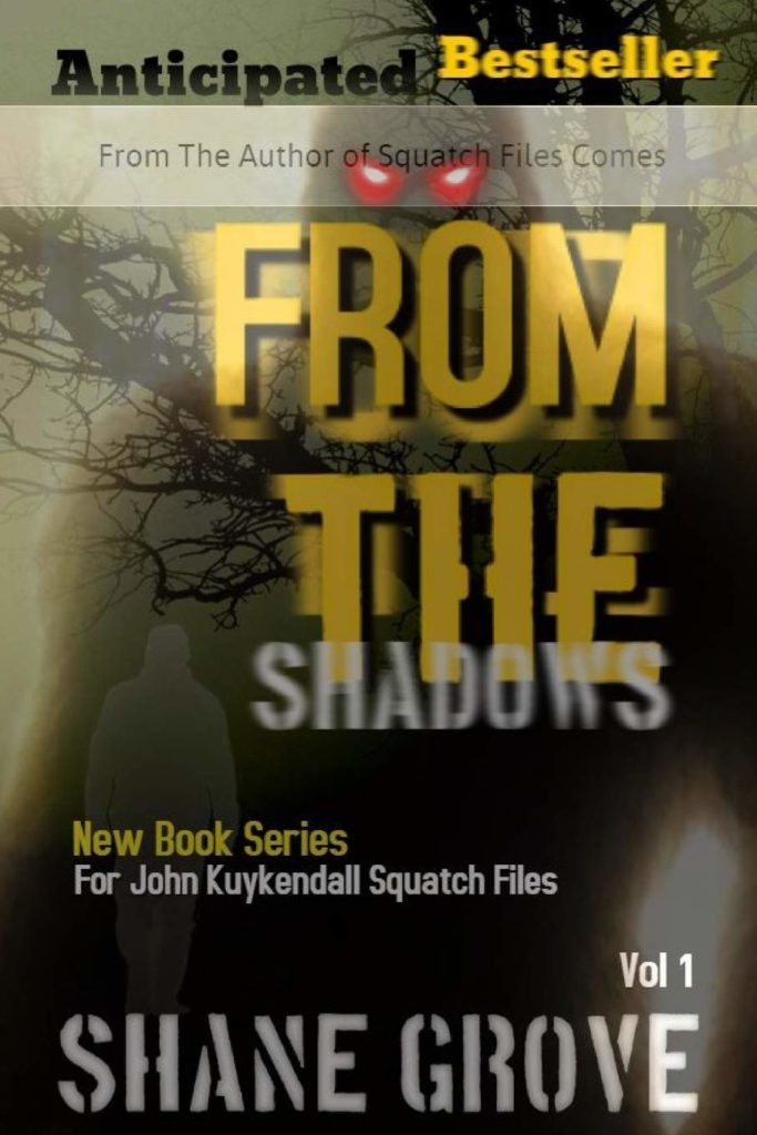 """""""From The Shadows"""" book cover"""